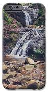 Picturesque iPhone Case by Laurie Search