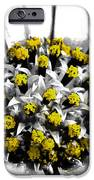 Pollen  iPhone Case by Steve Taylor