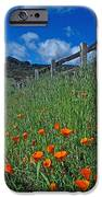 Poppies and the Fence iPhone Case by Kathy Yates