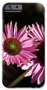 Pretty Flowers iPhone Case by Joe Fernandez