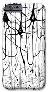 Pyramidal Cells Illustrated By Cajal iPhone Case by Science Source