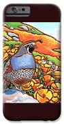 Quail Poppies iPhone Case by Nadi Spencer