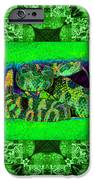 Rattlesnake Abstract Window 20130204p75 iPhone Case by Wingsdomain Art and Photography