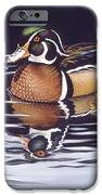 Royal Reflections iPhone Case by Richard De Wolfe