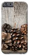 Rustic wood with pine cones iPhone Case by Elena Elisseeva