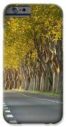 Saint Remy Trees iPhone Case by Brian Jannsen
