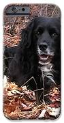 sammi smiling in leaves iPhone Case by Randi Shenkman
