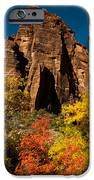 Sandstone Cliffs and Fall Colors Zion National Park iPhone Case by Robert Ford