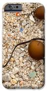 Seaweed and Sand - Jewels of the Ocean iPhone Case by Artist and Photographer Laura Wrede