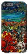 SECRET GARDEN iPhone Case by TERESA WEGRZYN