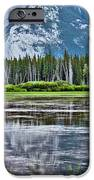 Silver Reflections iPhone Case by Linda Sannuti