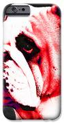 Southern Dawg By Sharon Cummings iPhone Case by Sharon Cummings