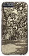 Southern Lane sepia iPhone Case by Steve Harrington