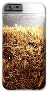 Straw Bale in Old Barn iPhone Case by Olivier Le Queinec