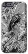 Street Shadow Dancer 1 - Black and White - Square crop iPhone Case by Ian Monk