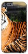 Sumatran Tiger 5D27142 iPhone Case by Wingsdomain Art and Photography