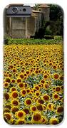 Summer Bliss iPhone Case by FRANCE  ART
