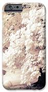 Surreal Infrared Ethereal Nature With White Flamingos - Infrared Trees and Flamingos  iPhone Case by Kathy Fornal
