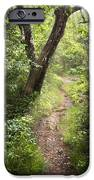The Appalachian Trail iPhone Case by Debra and Dave Vanderlaan