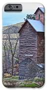 The Old Grain Storage iPhone Case by Steve McKinzie