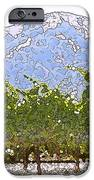 The Taste of Wine iPhone Case by Artist and Photographer Laura Wrede