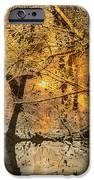 Time iPhone Case by Yanni Theodorou