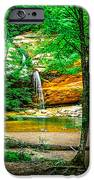 Tree roots iPhone Case by Optical Playground By MP Ray