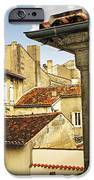 View in Cognac iPhone Case by Elena Elisseeva