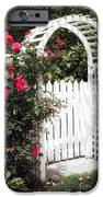 White arbor with red roses iPhone Case by Elena Elisseeva