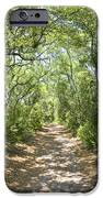 Woodland Path iPhone Case by Glennis Siverson
