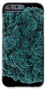 Bacterial Ribosome, Molecular Model iPhone Case by Laguna Design