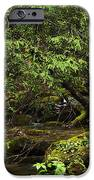Rushing Mountain Stream iPhone Case by Thomas R Fletcher