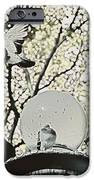 CITY DOVES iPhone Case by JAMART Photography