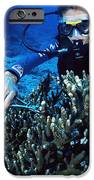 Coral Research iPhone Case by Alexis Rosenfeld