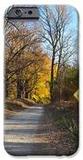 Gods Country iPhone Case by Bill Cannon
