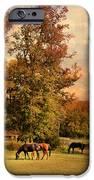 Grazing in Autumn iPhone Case by Jai Johnson