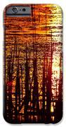 Horicon Marsh Sunset Wisconsin iPhone Case by Steve Gadomski