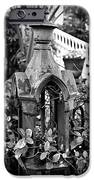 Iron Post Detail iPhone Case by Perry Webster