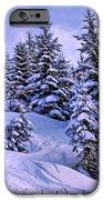 Merry Christmas and a Wonderful New Year iPhone Case by Sabine Jacobs