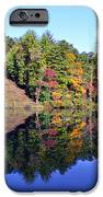 Mirror Image iPhone Case by Susan Leggett