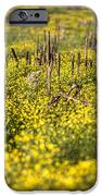 Missing You iPhone Case by JC Findley