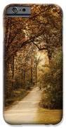 Morning Walk iPhone Case by Jai Johnson