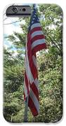 Old Glory iPhone Case by Jeannie Atwater Jordan Allen