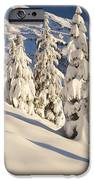 Oregon, United States Of America Snow iPhone Case by Craig Tuttle