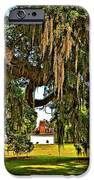 Plantation iPhone Case by Steve Harrington