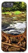 River and trees iPhone Case by Elena Elisseeva