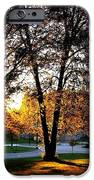 Sundown In Stanley Park iPhone Case by Will Borden