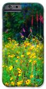 Sunflowers and Grasses iPhone Case by Judi Bagwell