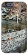The Crossing iPhone Case by JC Findley