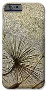 Three Wishes iPhone Case by Artist and Photographer Laura Wrede
